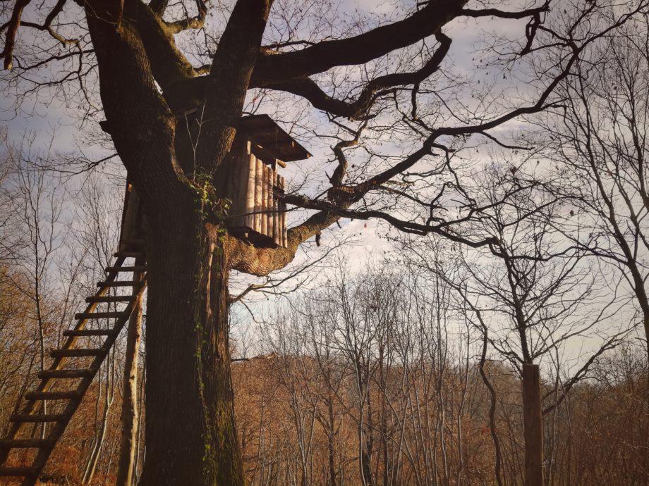 Minimalismo e piccole case