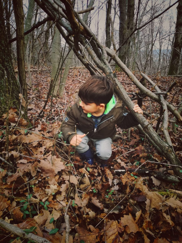 Capanne nel bosco e piani di fuga